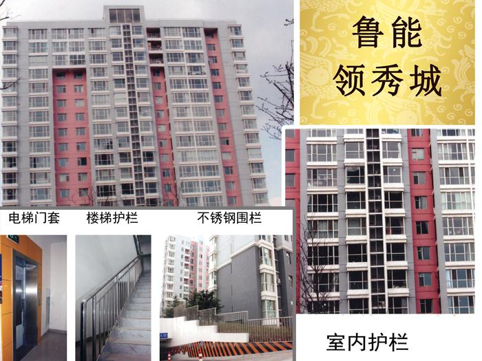 鲁能领秀城工程项目